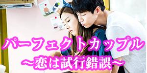 パーフェクトカップル~恋は試行錯誤~の画像