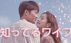 韓国ドラマ「知ってるワイフ」