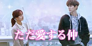 韓国ドラマ「ただ愛する仲」の画像